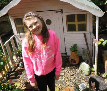 Hot Pink Sweatshirt Image