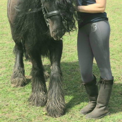 leggings and a horse
